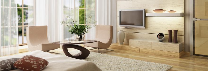 meubles au style design